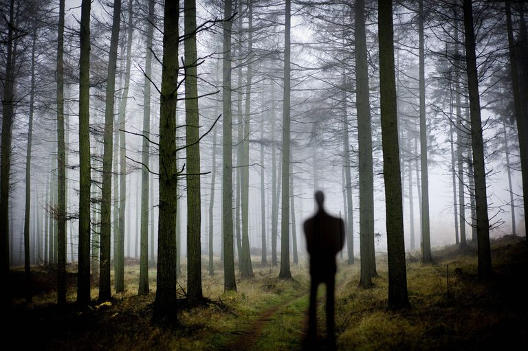 Silhouette of a man in the woods