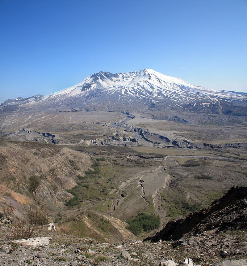Mount St Helens Blast Zone as of 2009