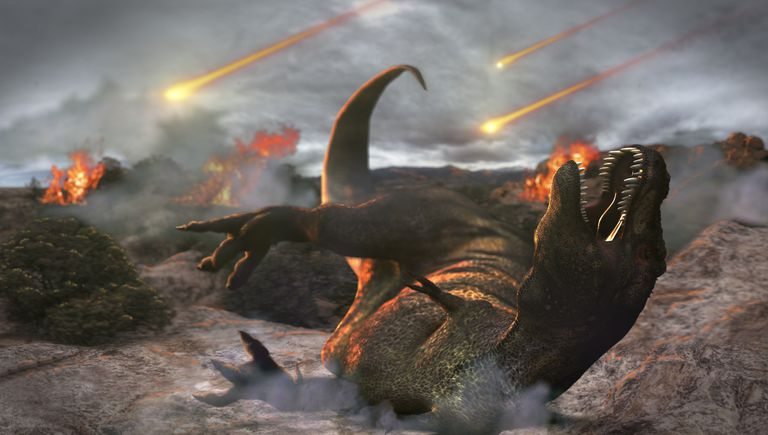 The K-T Extinction killed off all the dinosaurs