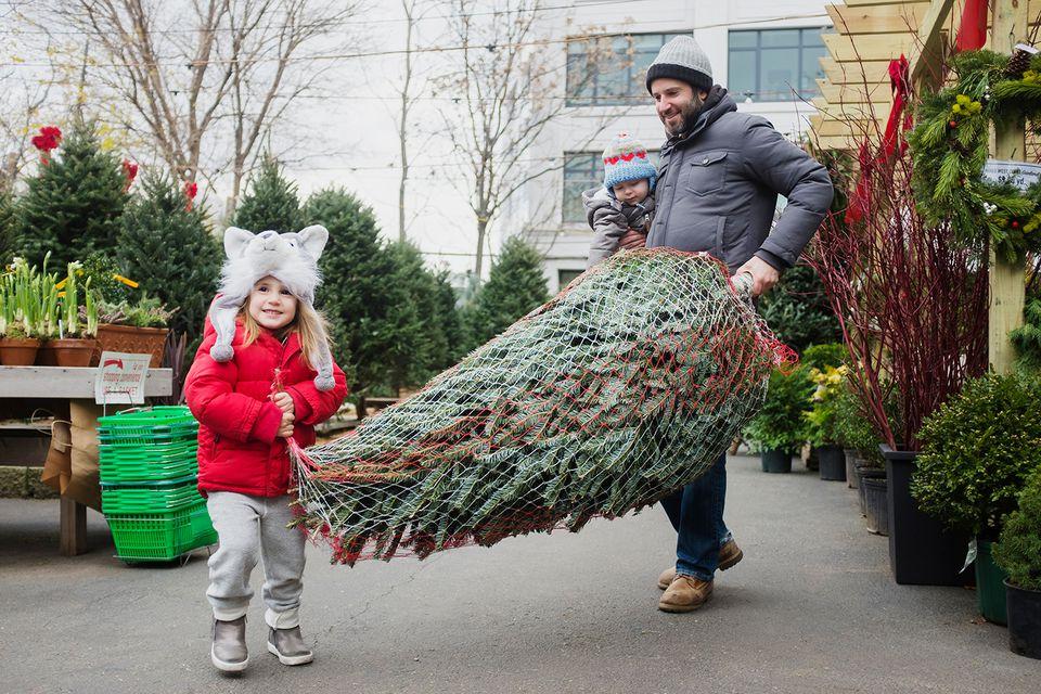 Man carrying Christmas tree