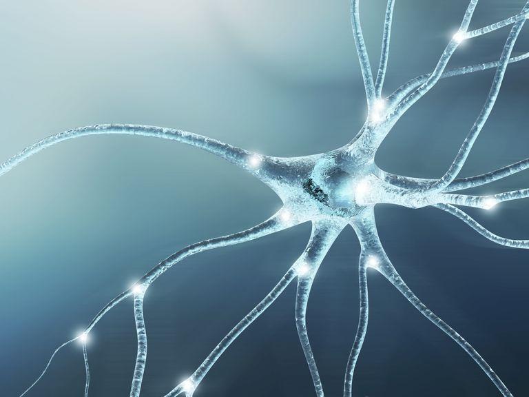 Nerve cell, artwork