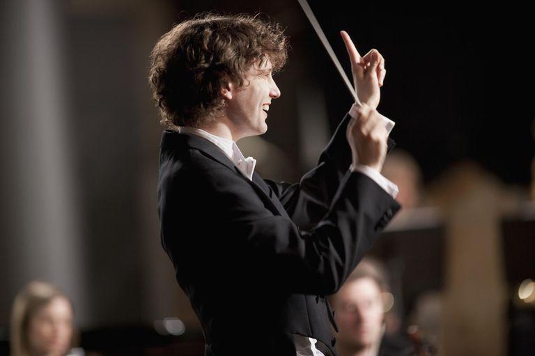 orchestra, musicians