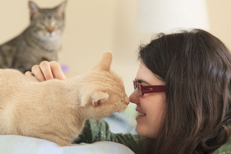 Woman with Asperger syndrome playing with her pet cats