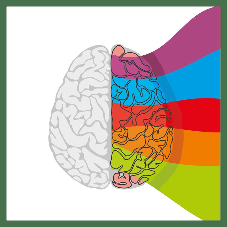 Brain cartoon