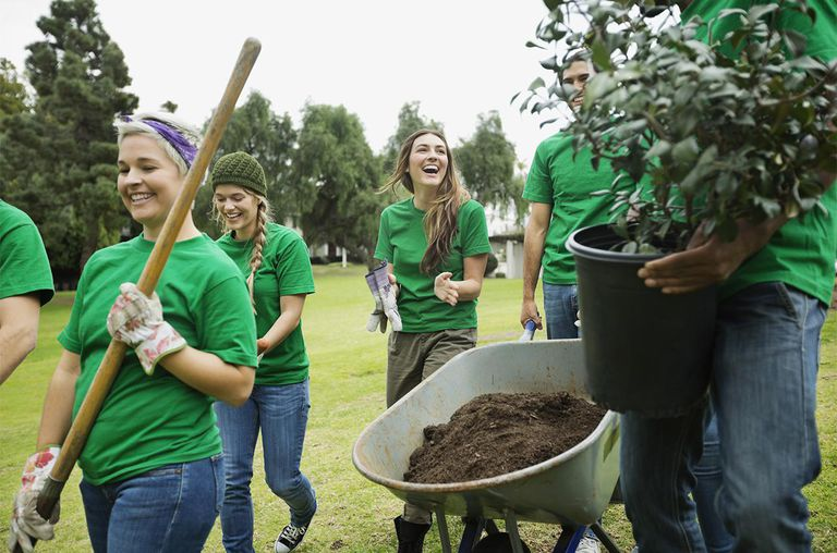 Group of happy environmentalists walking with potted plant and wheelbarrow in park