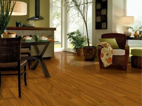 Laminate Flooring In a Multi-Colored Living Room Decor