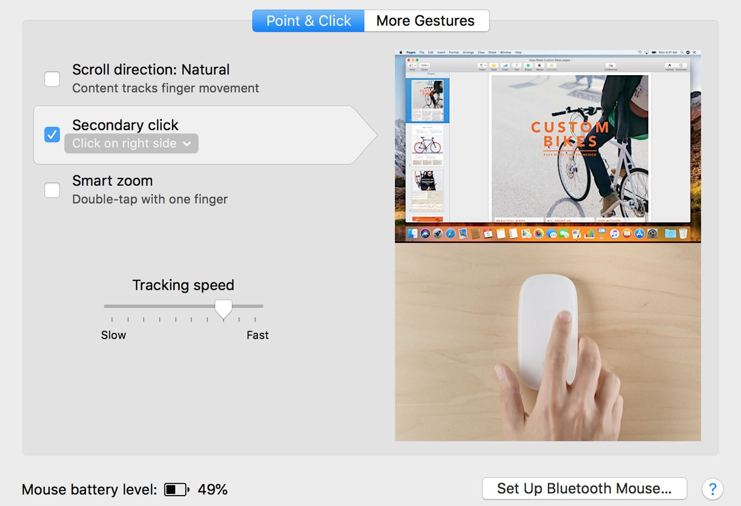 Magic Mouse preferences in macOS High Sierra