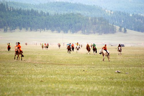Mongolia - Horses