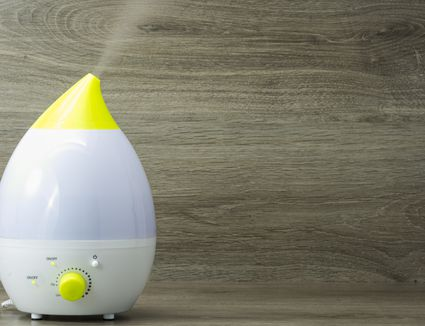 Signs That You Need A Humidifier In Your Home