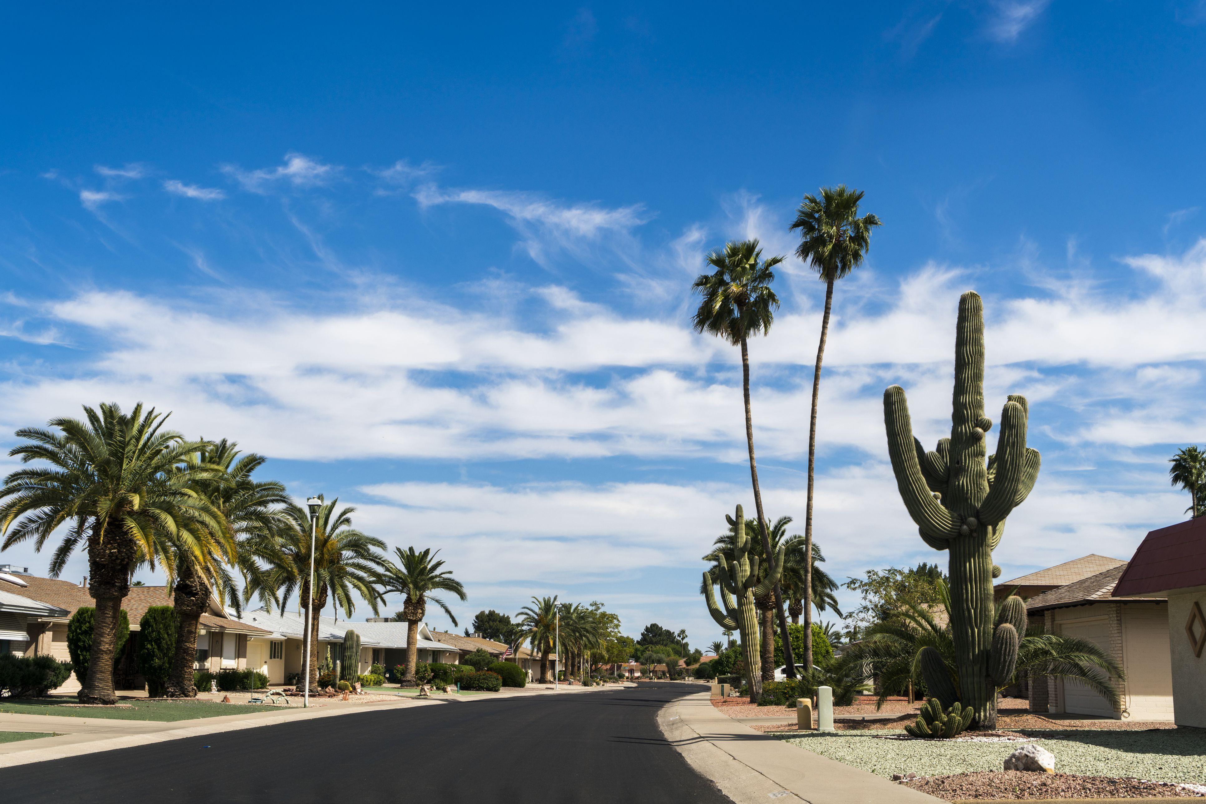 Arizona State Travel Guide