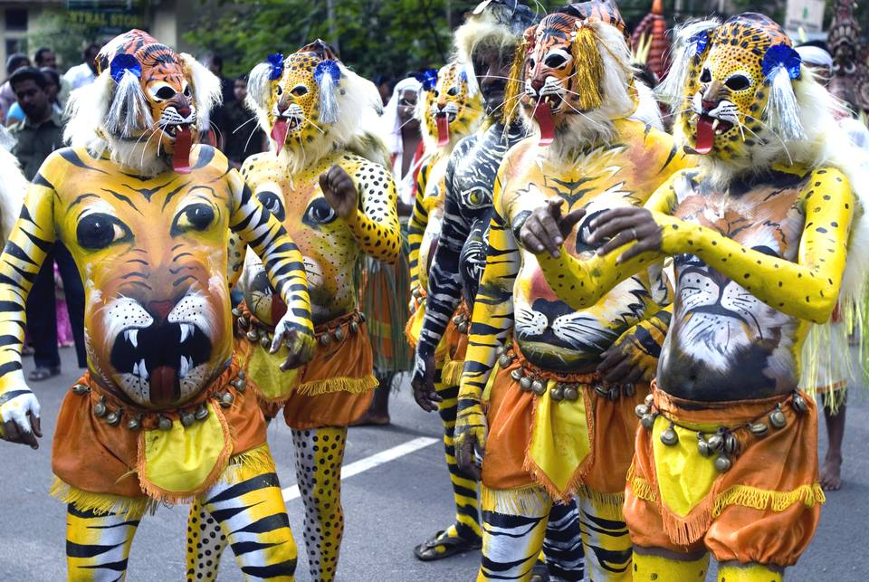 Pulikali or tiger play performers painted bodies like tigers during onam celebration
