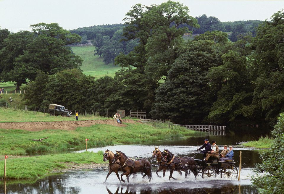 Horses pulling carriage across water obstacle.