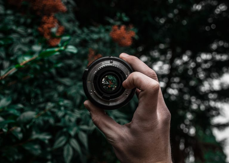 A lens being held up in a forest.
