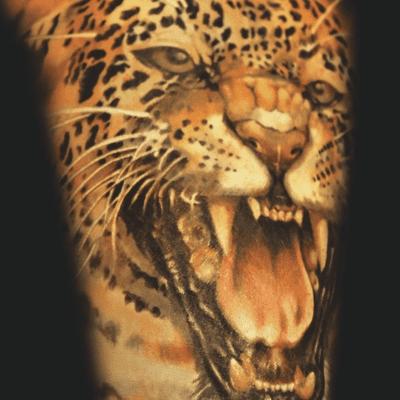 Tatuajes de tigres - Murcielago en casa significado ...