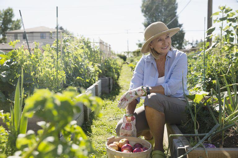 Woman resting in vegetable garden.