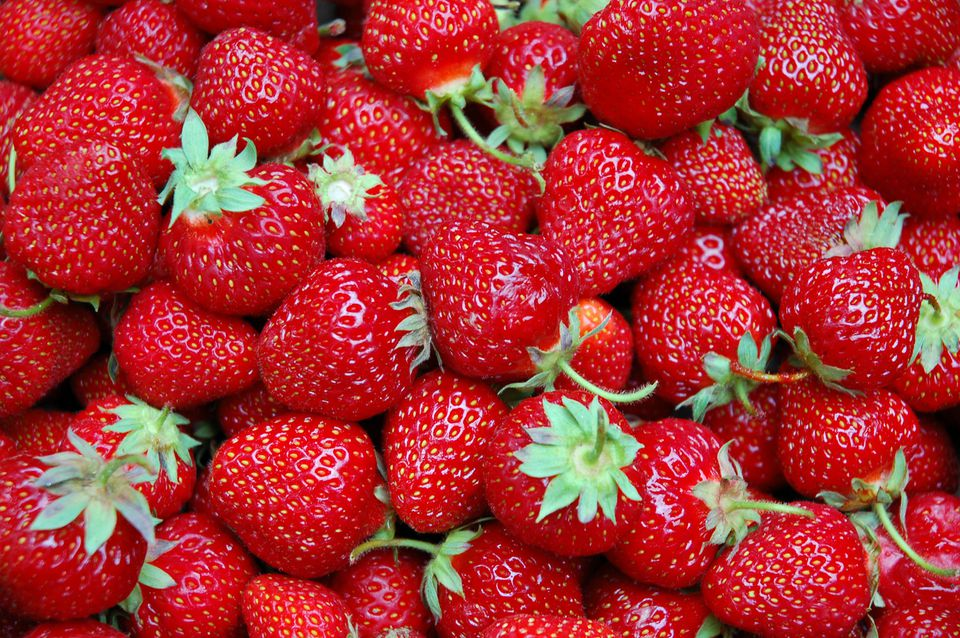 New England Strawberries