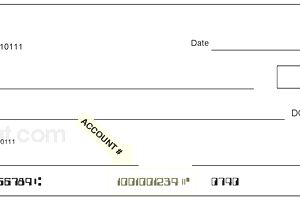 Account number on a check