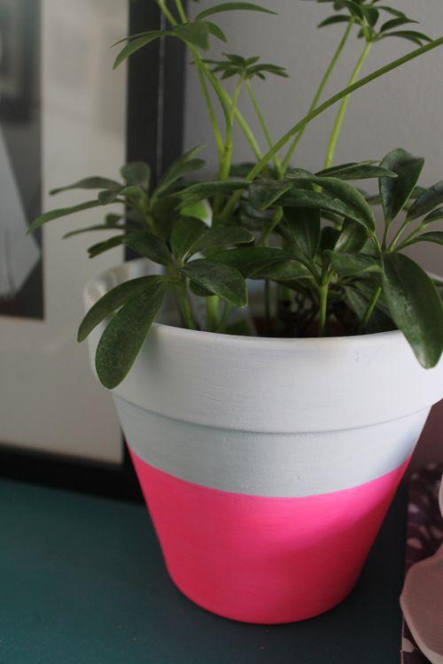 DIY Neon Pot