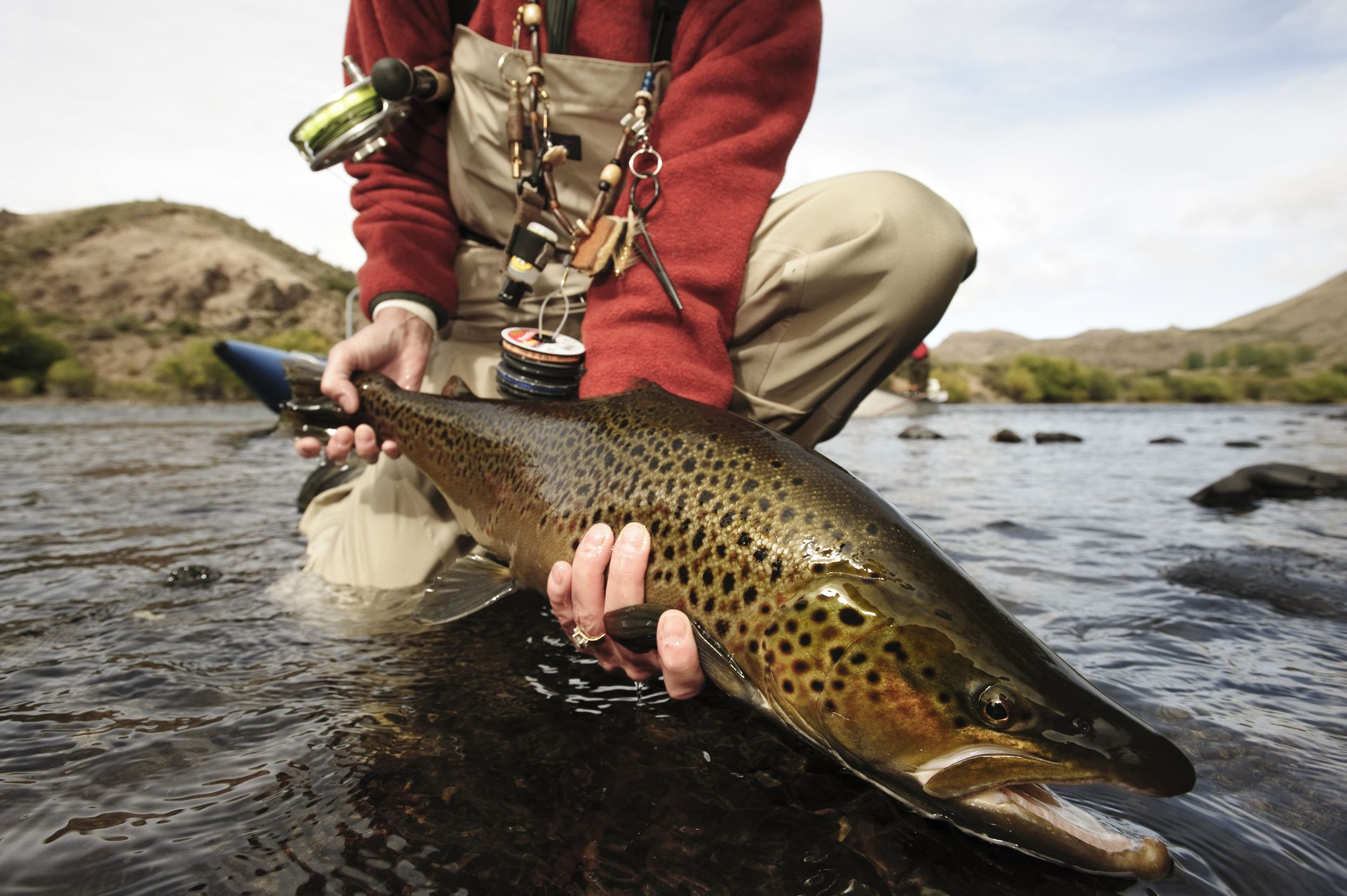 6 great international destinations for fly fishing for Best trout fishing in the us