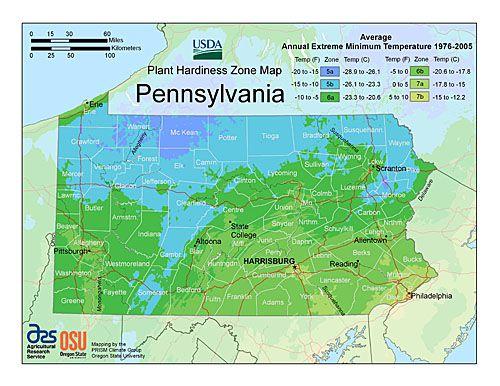 Plant Hardiness Zone Map Provided By USDA Image - Us hardiness zone map
