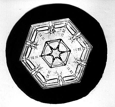 This snowflake exhibits hexagonal plate crystal structure.