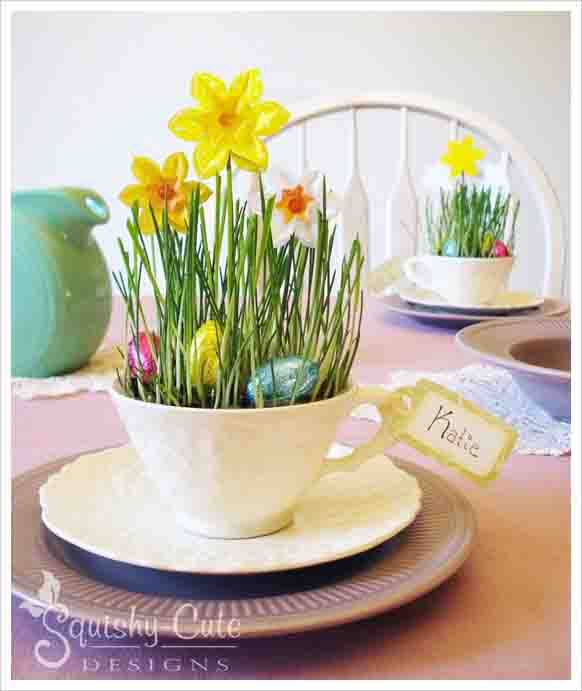teacup daffodils