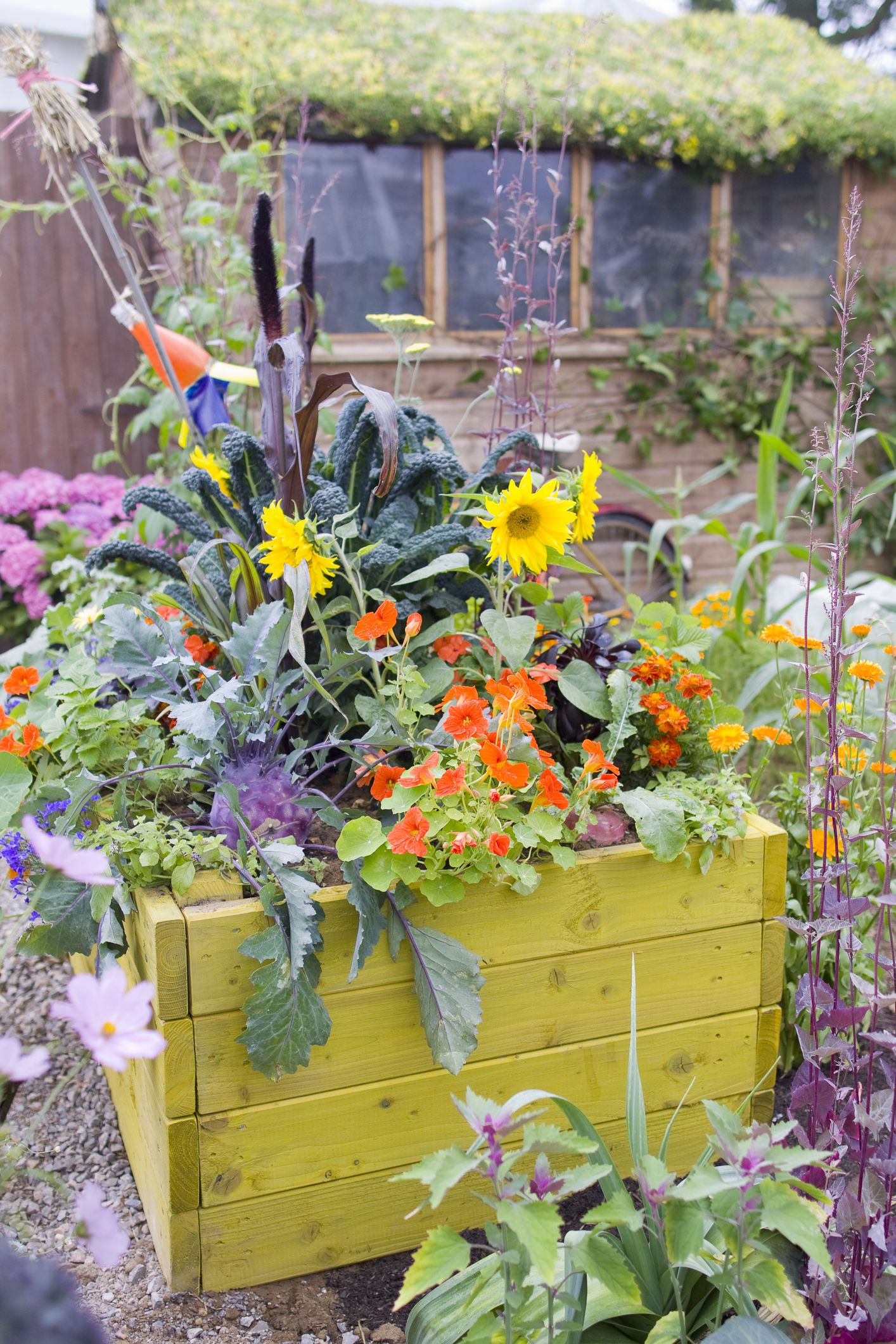tips for building a low maintenance raised bed