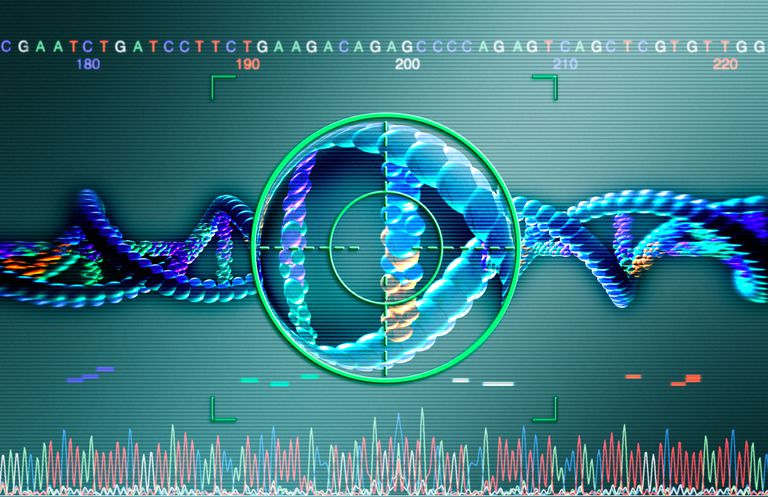 Microevolution is caused by changes in DNA