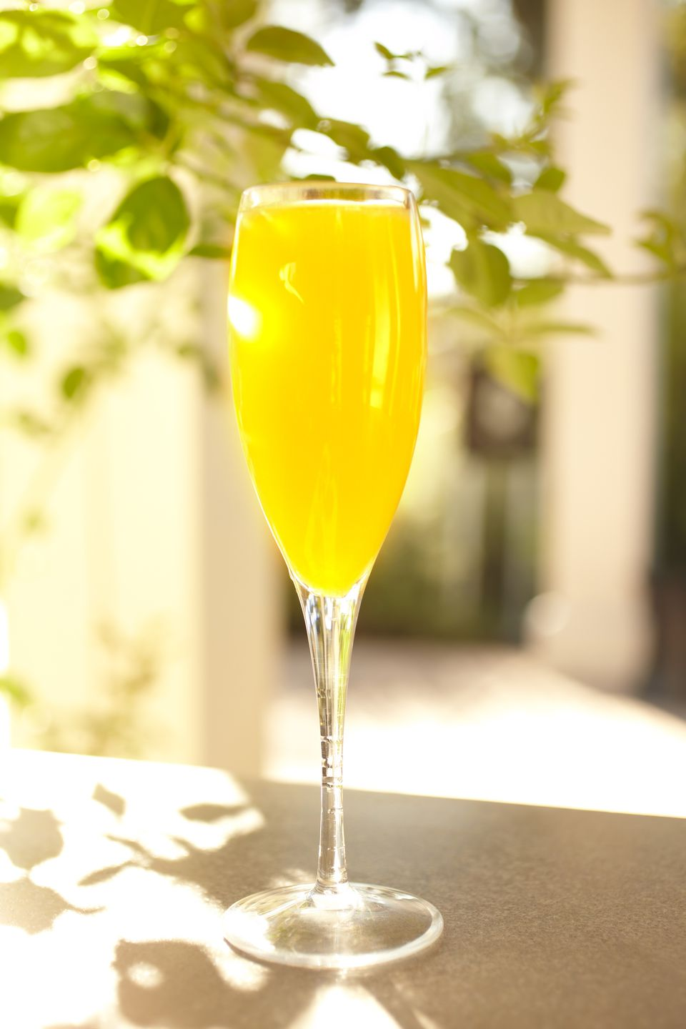 Mimosa orange juice cocktail in champagne glass