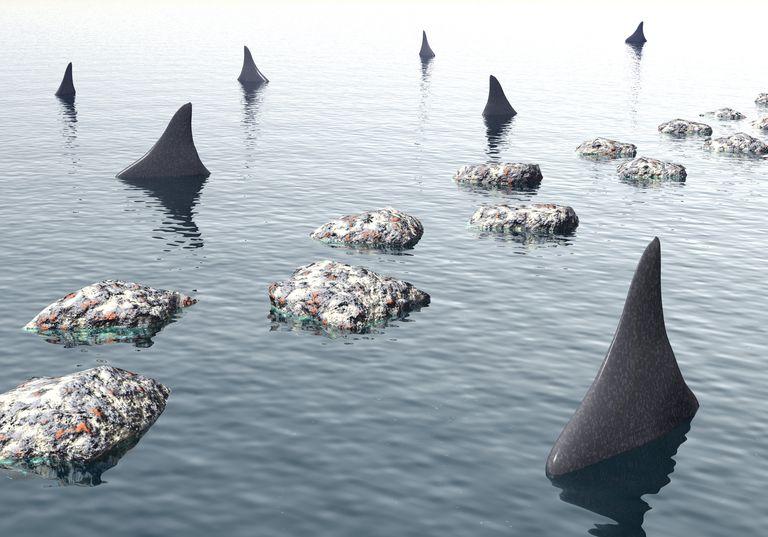 sharks circling along a way made of steppingstones