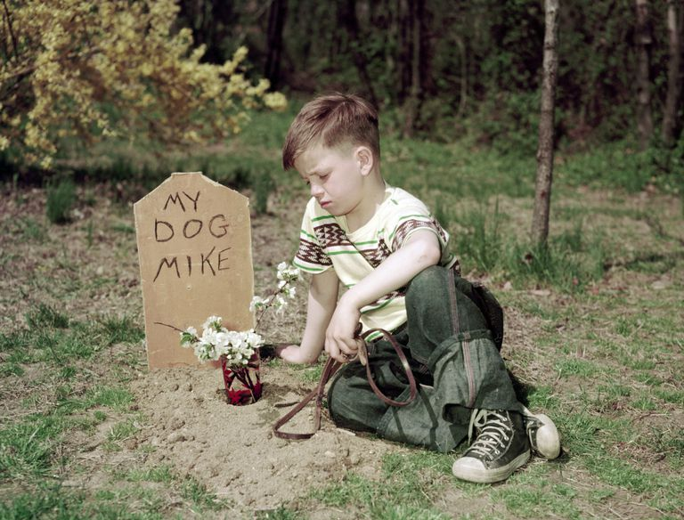 Boy at Dog's Grave
