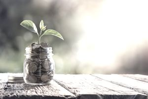growing money in a jar