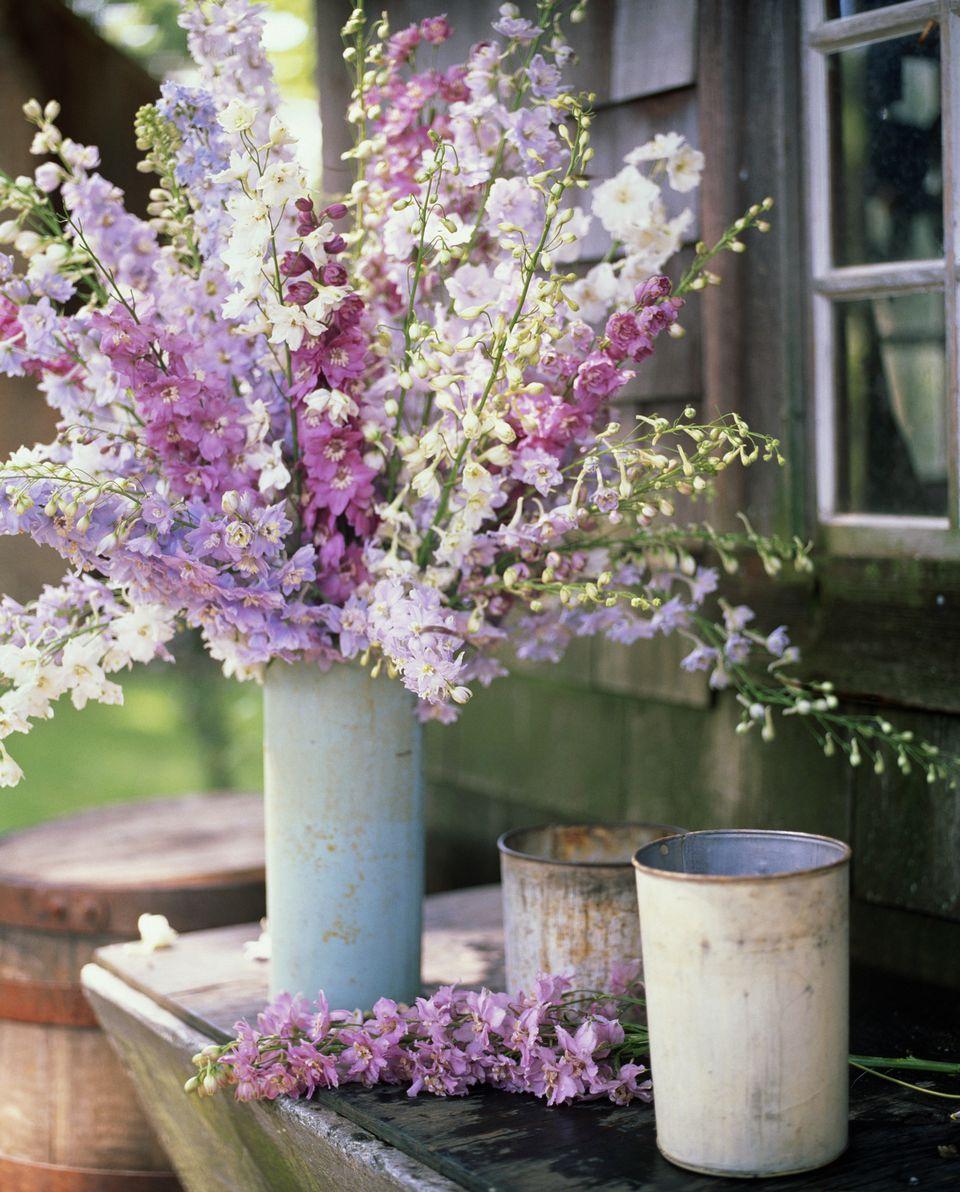 Wedding Flowers For Summer: 12 Summer Wedding Flowers In Season