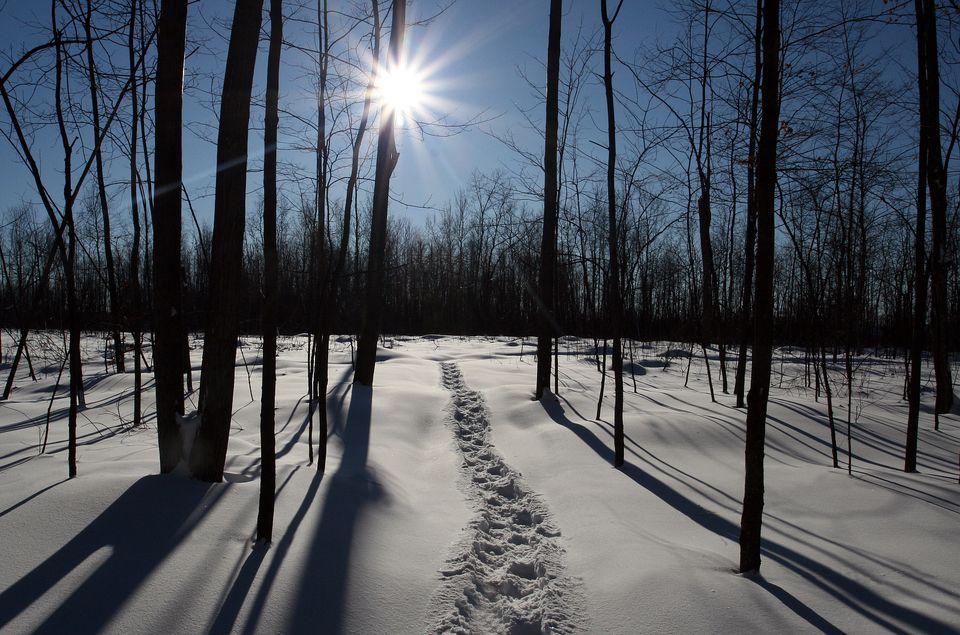 Montreal winter activities in 2017-2018 include snowshoeing.