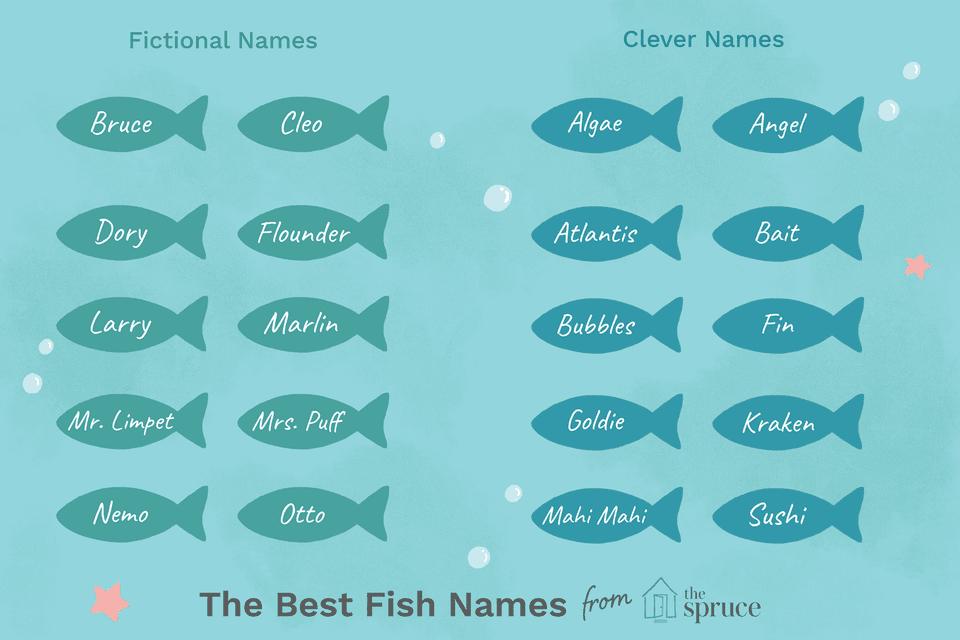 fish name ideas