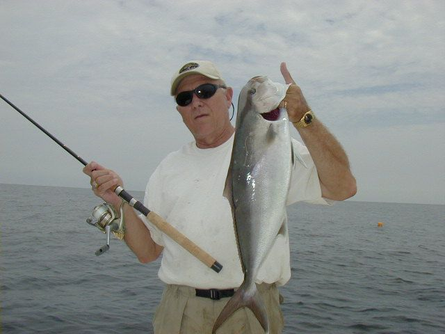 A small wreck amberjack caught on light tackle after a 30 minute fight. Released unharmed!