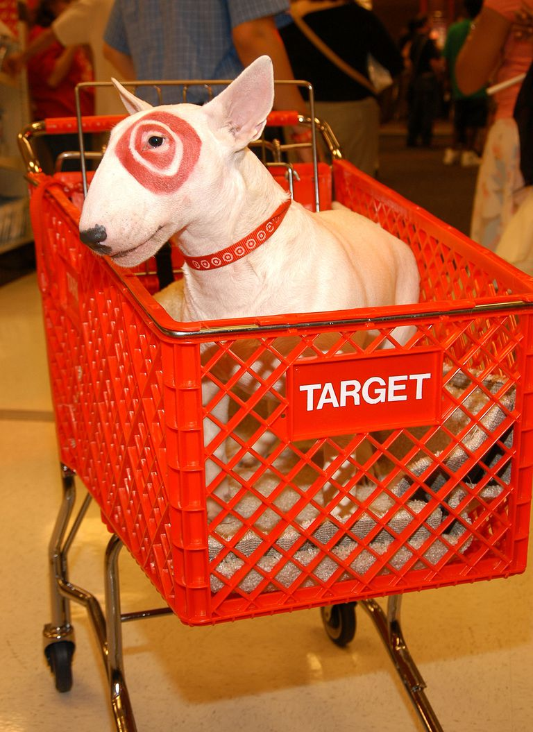 Target's Traditional Career Paths Questionable After Steinhefel Oust