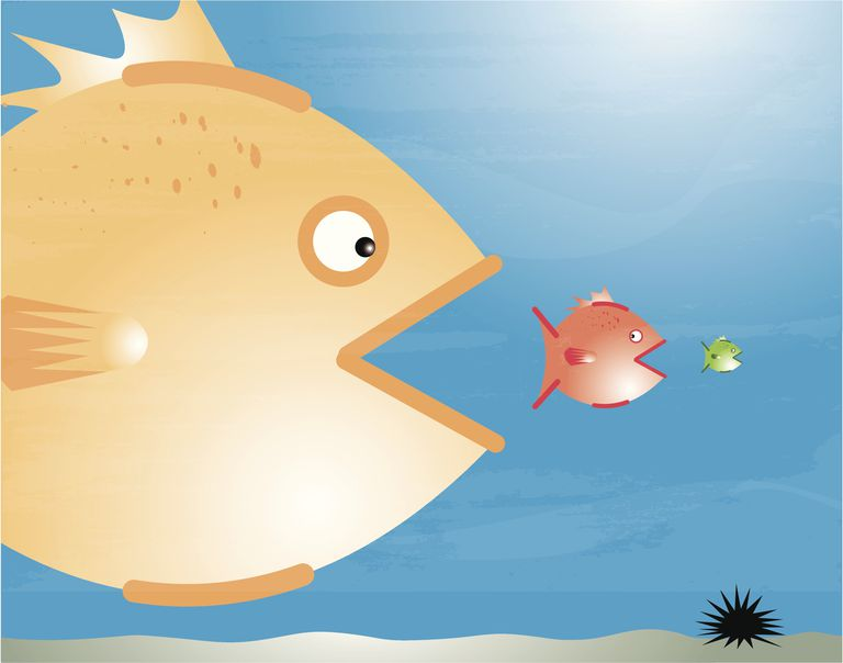 Illustration of a small fish being eaten by a medium fish, being eaten by a big fish