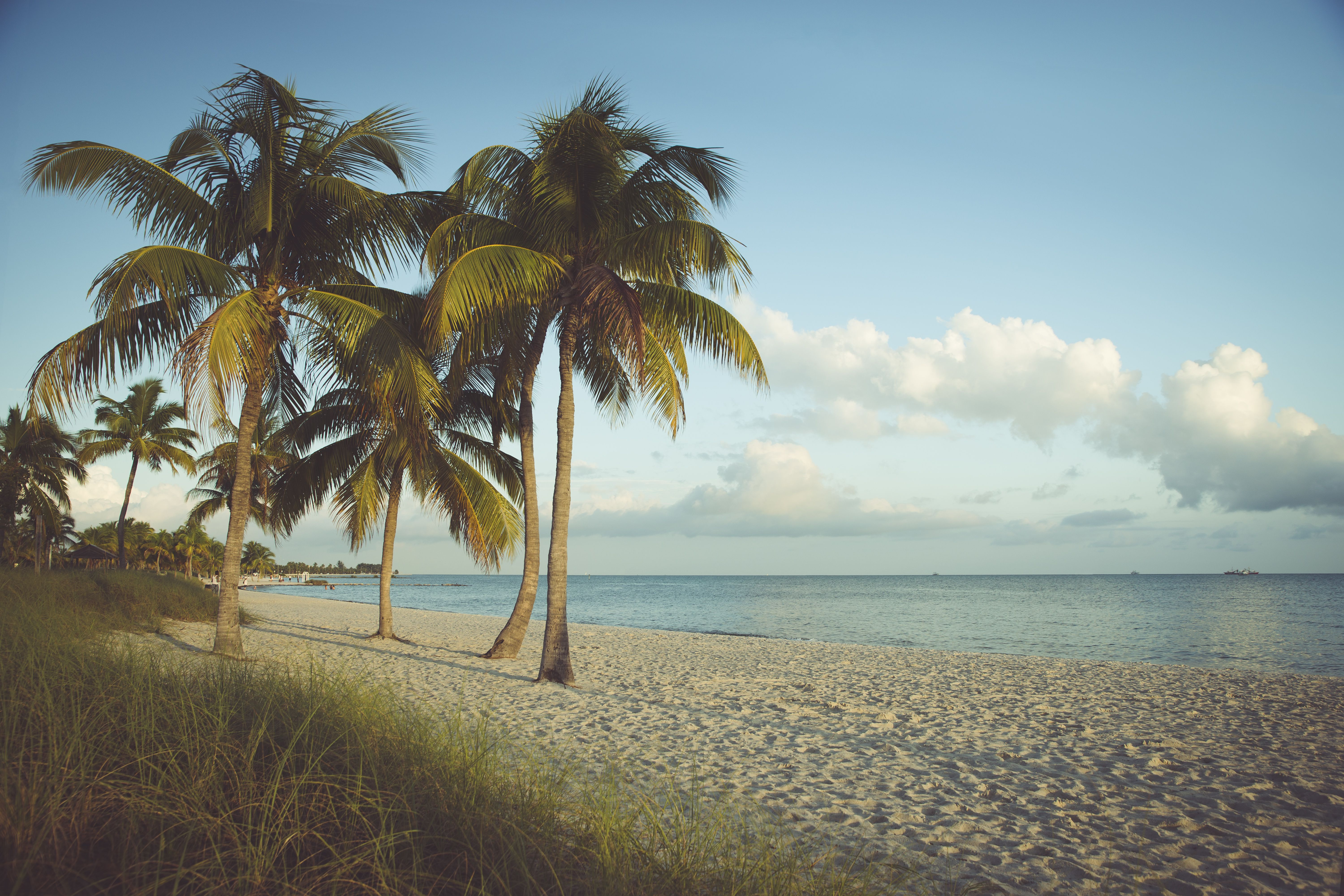 Checking Accounts In West Palm Beach