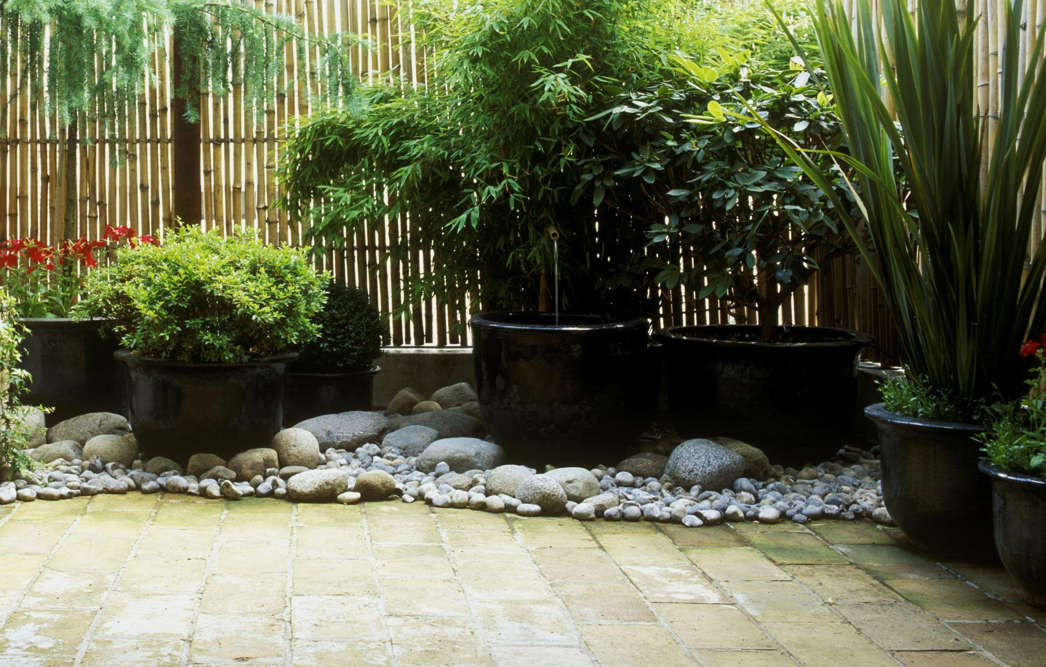 Crea un jard n para la sombra - Iluminacion solar de jardin ...