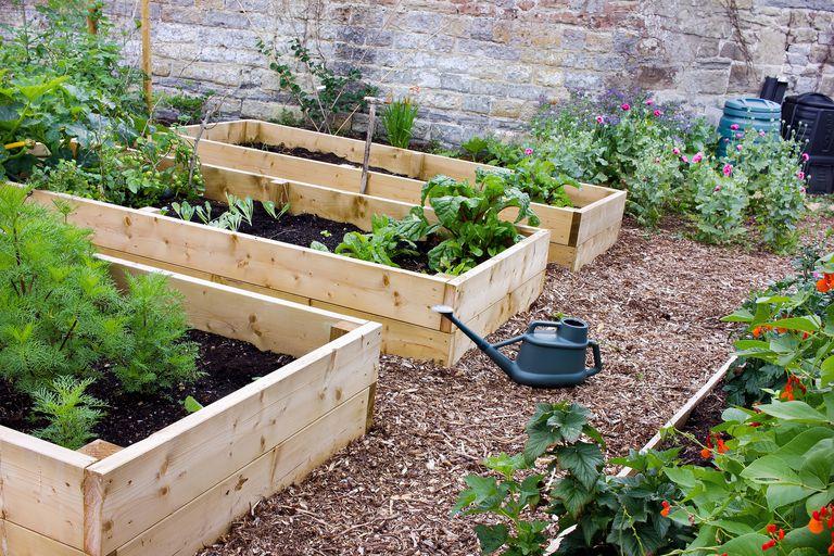 Jardin de verduras