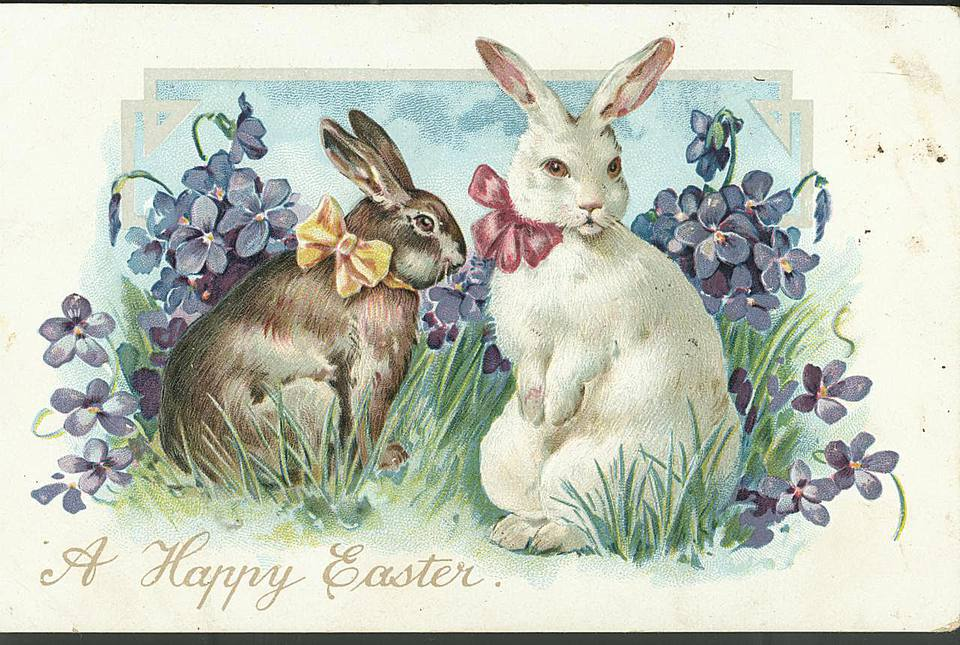 Easter postcard with rabbits, 1906