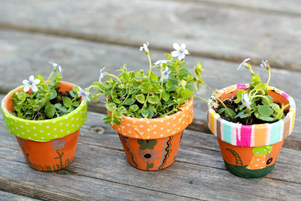diy mini flower garden pots. Black Bedroom Furniture Sets. Home Design Ideas