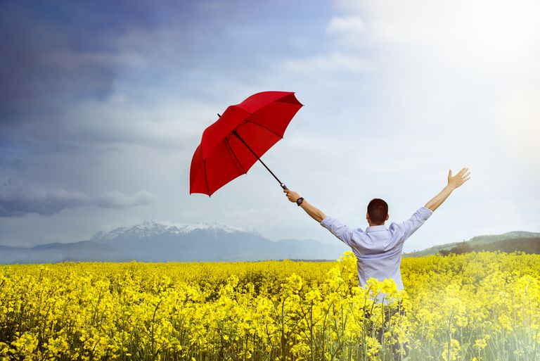 Man holding umbrella in field of flowers