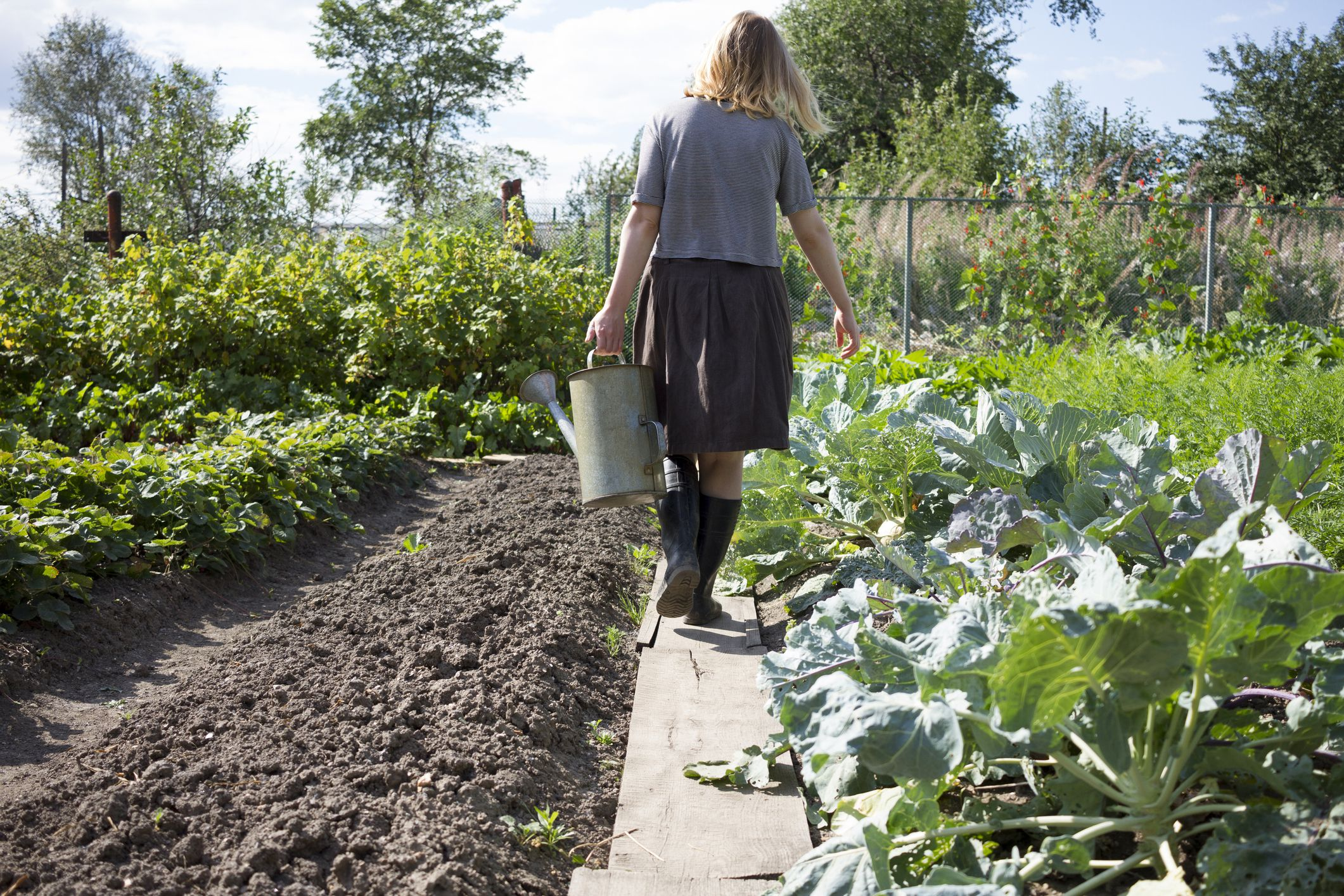 how to put your garden to bed and prepare for cold weather