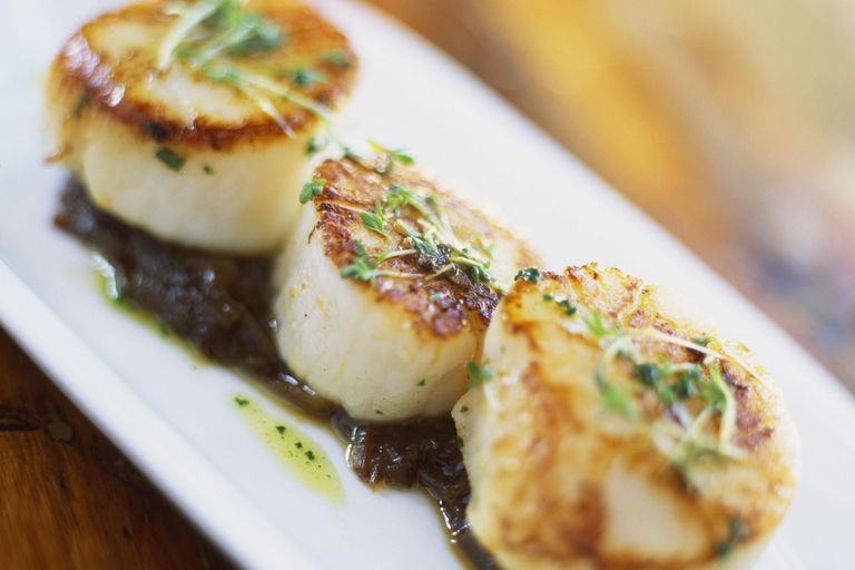 Grilled scallops on bed of onion confit, close-up