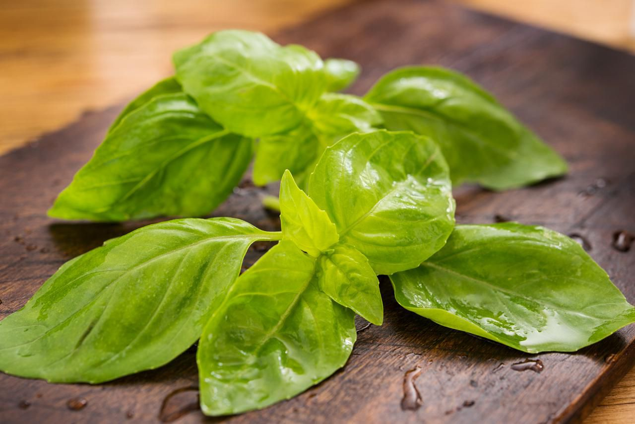 Basil Cooking Tips Uses And Recipes