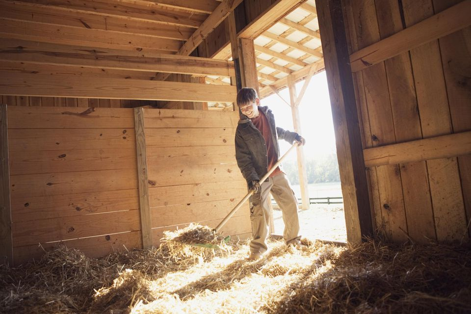 Teenage boy cleaning stable