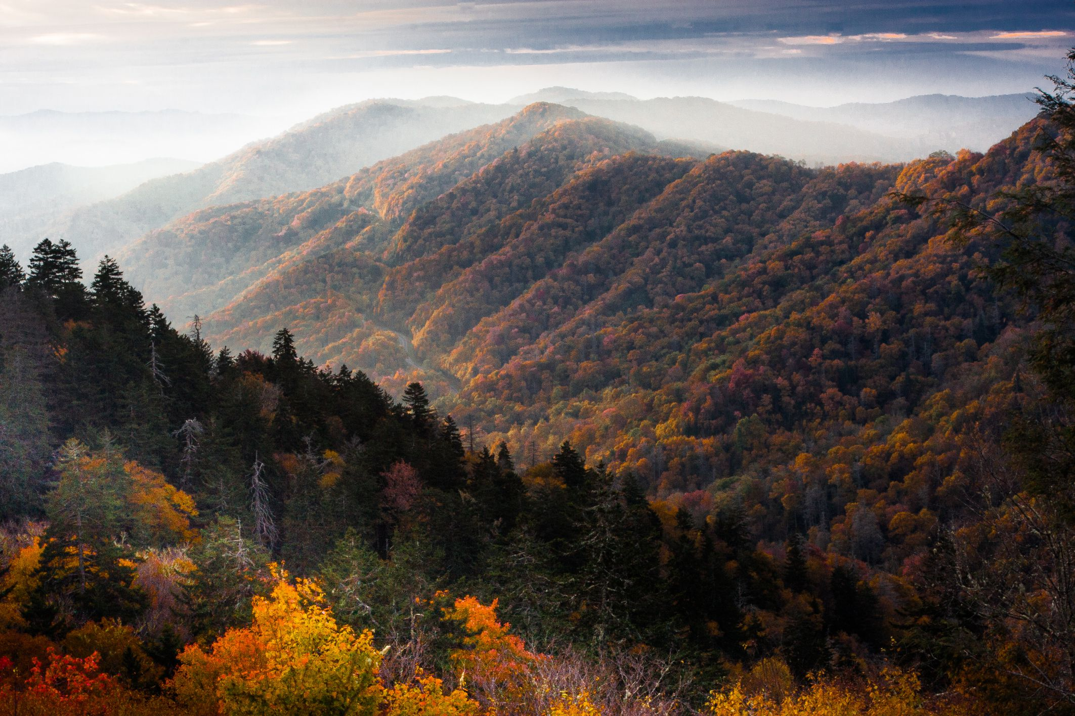 The Vibrant Fall Colors of Great Smoky Mountains National ...