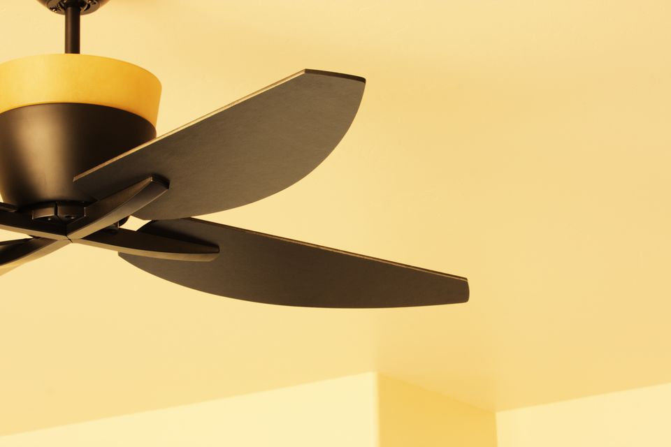 Ceiling Fan Blade Light Fixture Decor